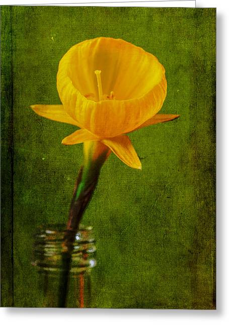Fine Bottle Greeting Cards - Yellow Flower In A Bottle II Greeting Card by Marco Oliveira