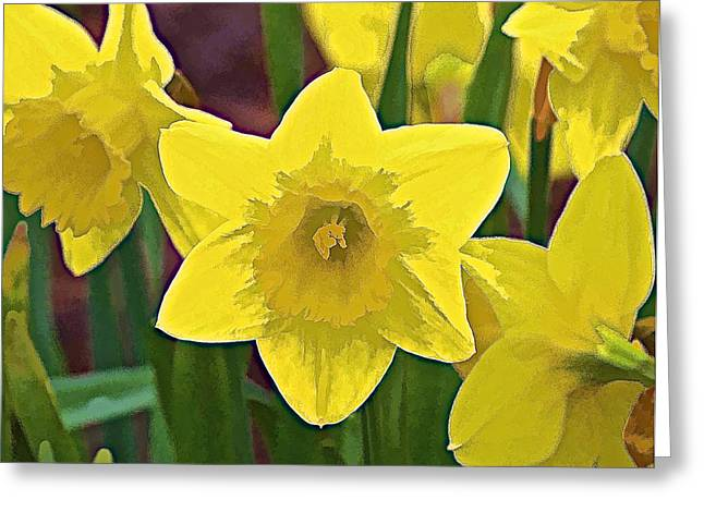 Yellow Flower Iris Greeting Card by David Letts