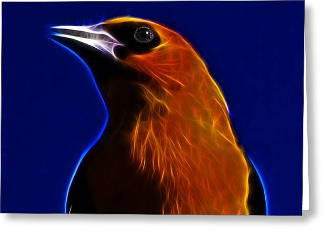 Chest Mixed Media Greeting Cards - Yellow Headed Blackbird Greeting Card by Shane Bechler