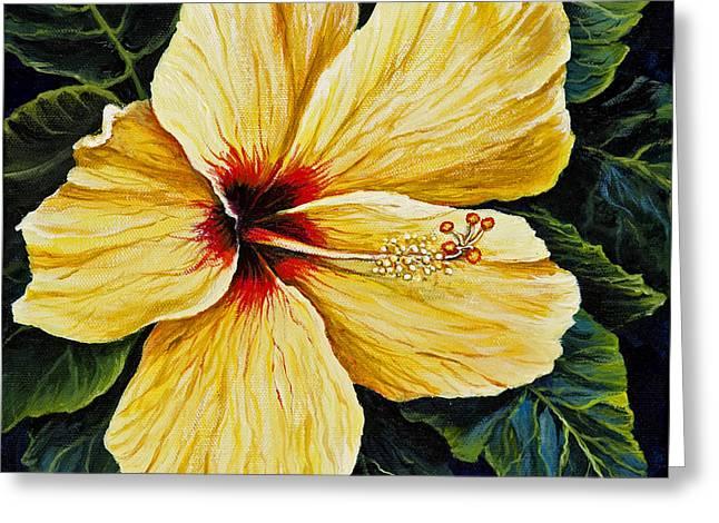 Yellow Hibiscus Greeting Card by Darice Machel McGuire