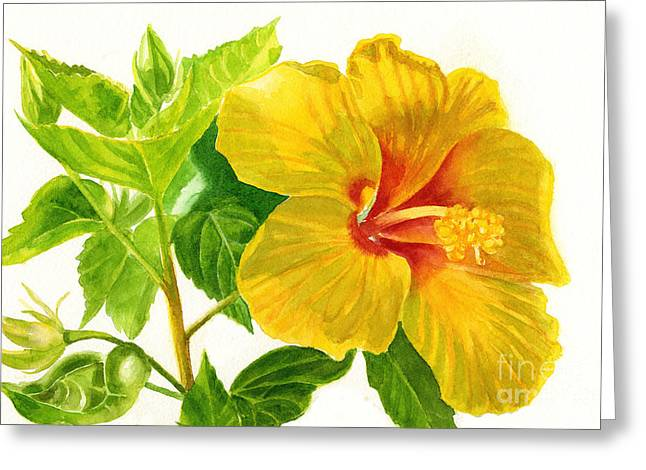 Hibiscus Greeting Cards - Yellow Hibiscus Flower Greeting Card by Sharon Freeman