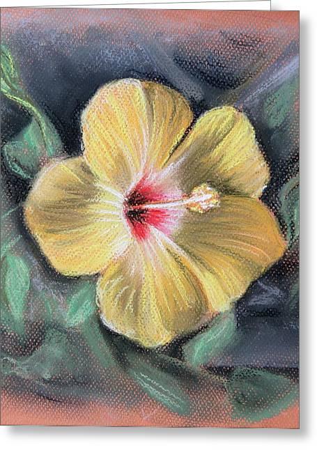 Florida Flowers Pastels Greeting Cards - Yellow Hibiscus Greeting Card by Melinda Saminski