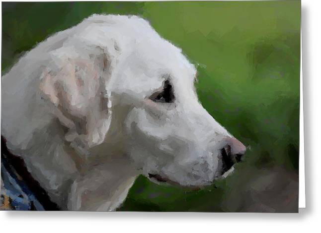 Yellow Dog Greeting Cards - Yellow Lab Greeting Card by Terry DeLuco