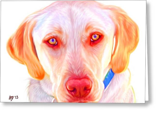 Buy Dog Prints Digital Greeting Cards - Yellow Labrador Dog Art with White Background Greeting Card by Iain McDonald
