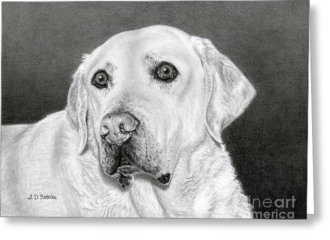 Photo Realism Drawings Greeting Cards - Yellow Labrador Retriever- Bentley Greeting Card by Sarah Batalka