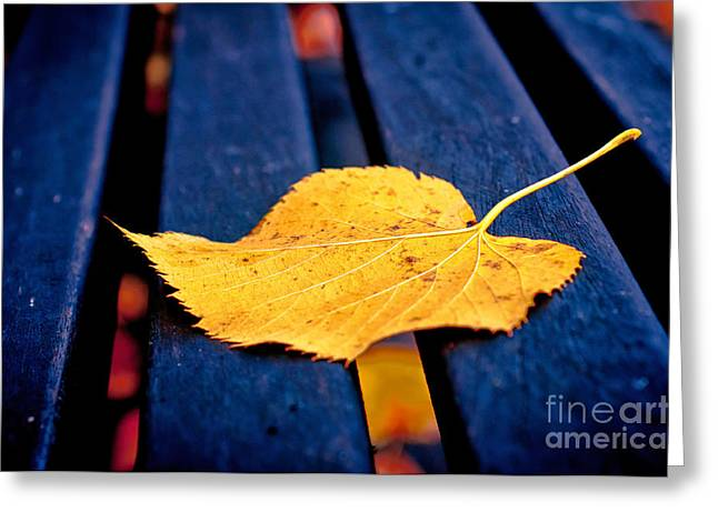 Yellow Leaf On Bench II Greeting Card by Silvia Ganora