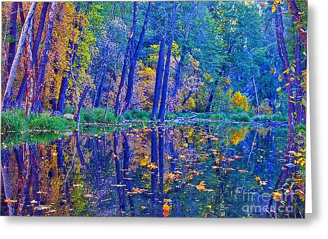 West Fork Greeting Cards - Yellow Leaves Greeting Card by Brian Lambert