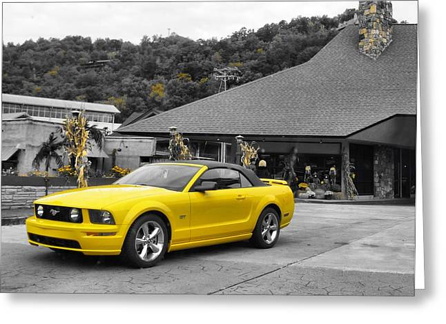 Shining Down Greeting Cards - Yellow Mustang Greeting Card by Dan Sproul