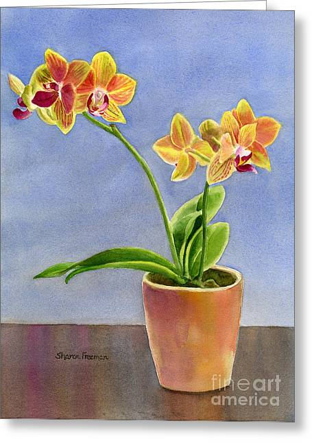 Yellow Flower Pot Greeting Cards - Yellow Orchid with Background Greeting Card by Sharon Freeman