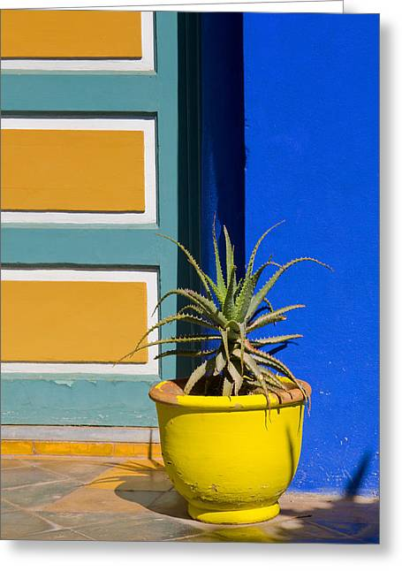 Yellow Pot  Greeting Card by Mick House