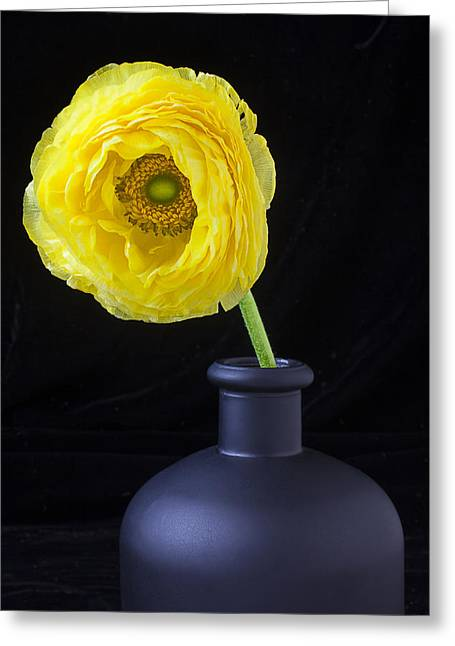 Ranunculus Greeting Cards - Yellow Ranunculus in black vase Greeting Card by Garry Gay