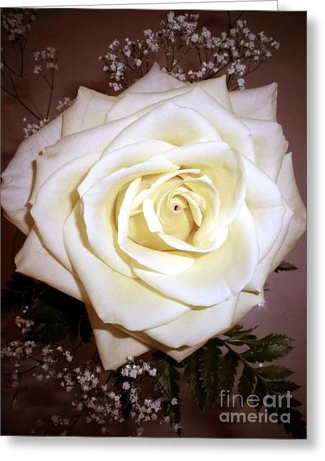 Yellow Rose Greeting Card by Barbie Corbett-Newmin