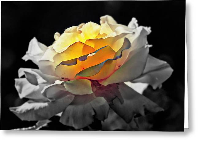Purchase Greeting Cards - Yellow Rose Series - ...But soul is alive Greeting Card by Lilia D