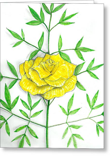 Nature Study Mixed Media Greeting Cards - Yellow Rose with shadows Greeting Card by Milton Rogers