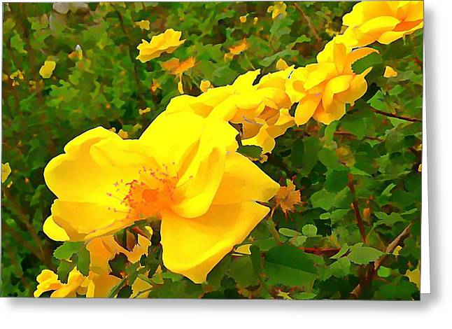 Customizable Greeting Cards - Yellow Roses  Greeting Card by Anne Sterling