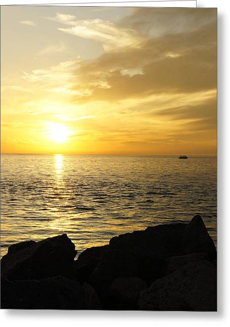 Laurie Perry Greeting Cards - Yellow Sky Greeting Card by Laurie Perry