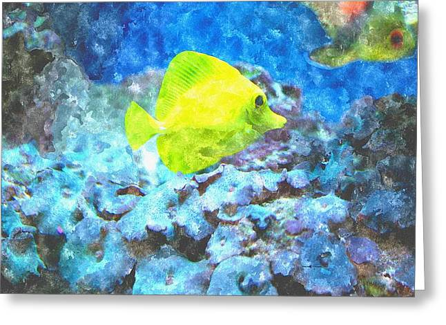 Blue And Purple Sea Greeting Cards - Yellow Tang Of Hawaii Greeting Card by Rosemarie E Seppala