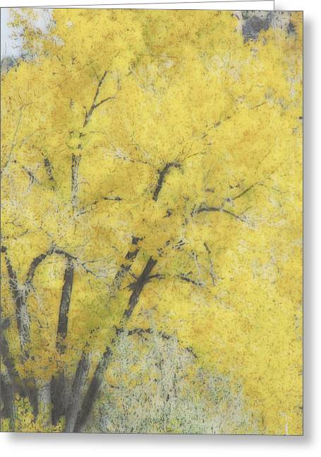 Textured Photograph Greeting Cards - Yellow Trees Greeting Card by Ann Powell