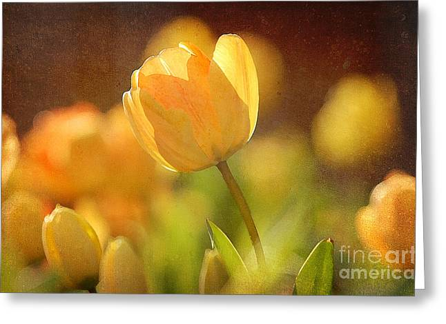 Many Mixed Media Greeting Cards - Yellow Tulips Greeting Card by Bedros Awak