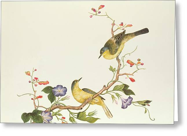 Dynasty Greeting Cards - Yellow Wagtail with Blue Head Greeting Card by Chinese School