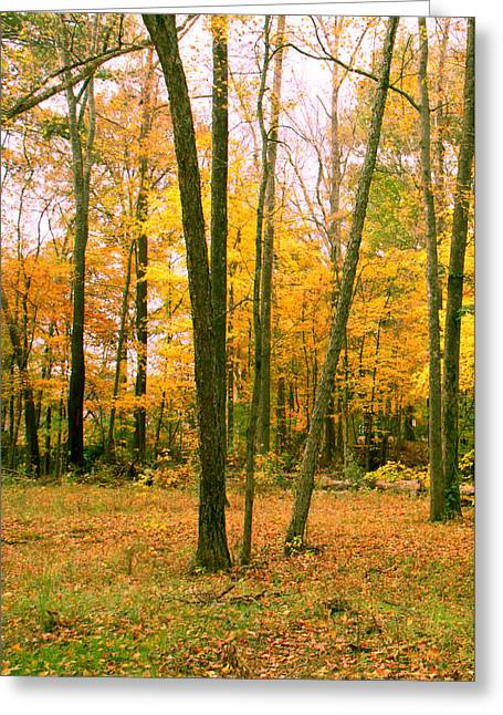 Fantacy Greeting Cards - Yellow Wood Vertical Greeting Card by Paul Anderson