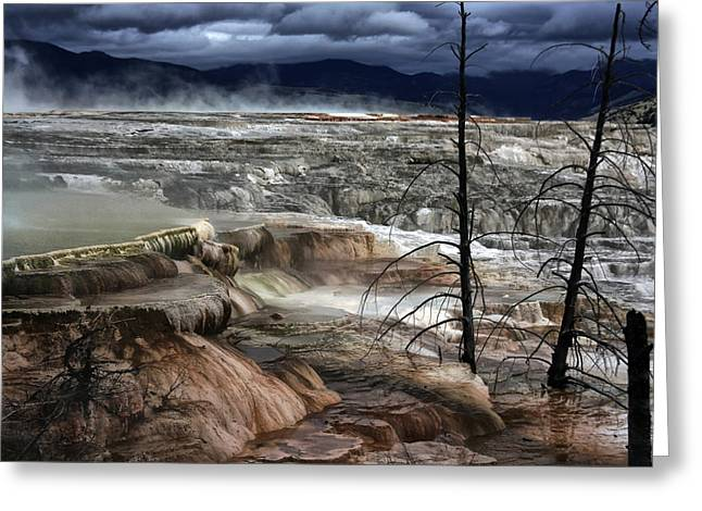 Hot Springs Yellowstone Midway Hot Springs Yellowstone Hot Greeting Cards - Yellowstone 16 Greeting Card by Ingrid Smith-Johnsen