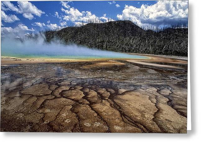 Hot Springs Yellowstone Midway Hot Springs Yellowstone Hot Greeting Cards - Yellowstone 6 Greeting Card by Ingrid Smith-Johnsen