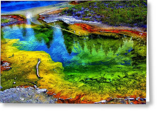 Hot Springs Yellowstone Midway Hot Springs Yellowstone Hot Greeting Cards - Yellowstone 9 Greeting Card by Ingrid Smith-Johnsen
