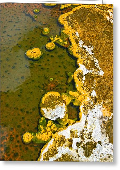 Boiling Greeting Cards - Yellowstone Abstract Greeting Card by Jamie Pham