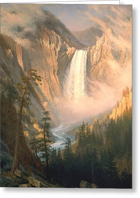 Yellowstone Greeting Card by Albert Bierstadt