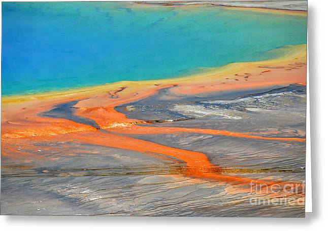 Hot Springs Yellowstone Midway Hot Springs Yellowstone Hot Greeting Cards - Yellowstone Colorful Grand Prismatic Spring Greeting Card by Debra Thompson