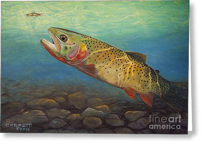 Yellowstone Cut takes a Salmon fly Greeting Card by Rob Corsetti