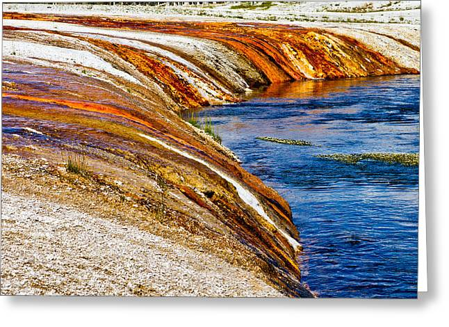 Yellowstone Earthtones Greeting Card by Bill Gallagher