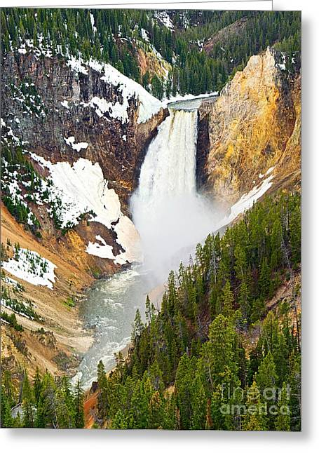 Wyoming Photography Greeting Cards - Yellowstone Falls in Spring Time Greeting Card by Jamie Pham