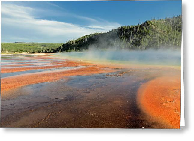 Mud Season Greeting Cards - Yellowstone Geyser Greeting Card by Mountain Dreams