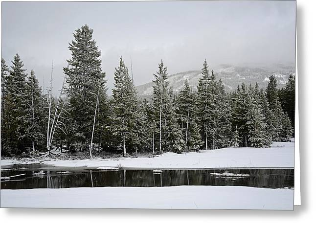 Yellowstone Gibbon Meadows Spring Snow And Reflection Greeting Card by Bruce Gourley