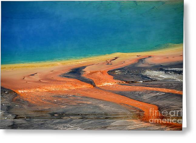Hot Springs Yellowstone Midway Hot Springs Yellowstone Hot Greeting Cards - Yellowstone Grand Prismatic Close Up Greeting Card by Debra Thompson
