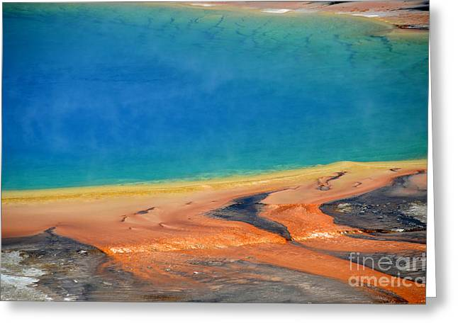 Hot Springs Yellowstone Midway Hot Springs Yellowstone Hot Greeting Cards - Yellowstone Grand Prismatic Colors Greeting Card by Debra Thompson
