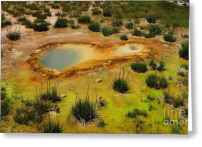 Power Plants Greeting Cards - Yellowstone Hot Pool Greeting Card by Ausra Paulauskaite