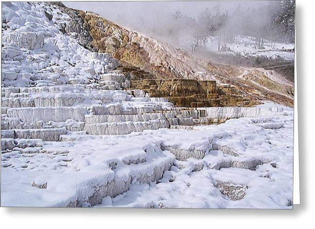 Enhanced Greeting Cards - Yellowstone Mammoth Hot Springs Snow A Greeting Card by Silver Wolf Trading Post