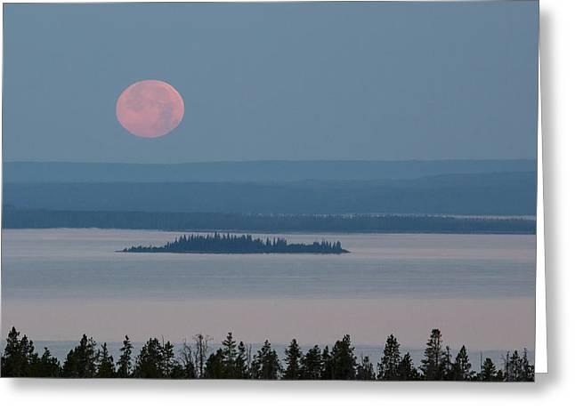 Yellowstone Moonset Greeting Card by Sandy Sisti