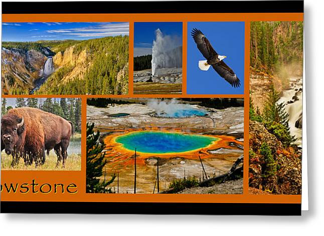 Yellowstone Art Greeting Cards - Yellowstone National Park Greeting Card by Greg Norrell