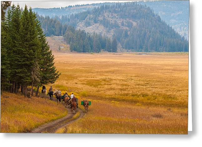 Yellowstone Pack Trips Greeting Card by Brenda Jacobs