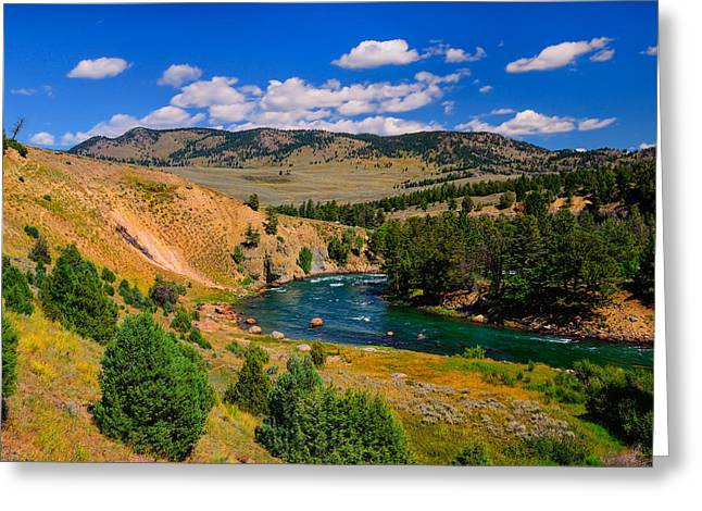 Yellowstone National Park Greeting Cards - Yellowstone River Bend Greeting Card by Greg Norrell