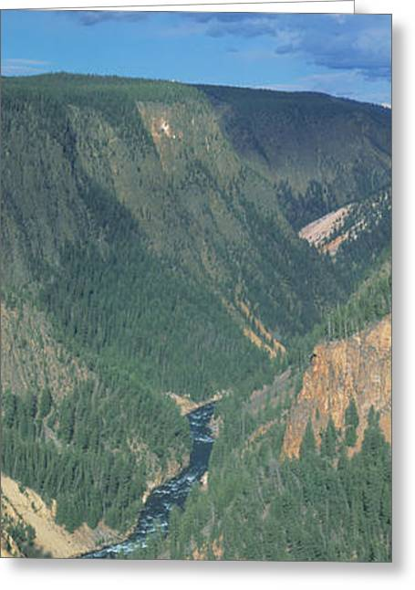 Inspiration Point Greeting Cards - Yellowstone River, Yellowstone National Greeting Card by Panoramic Images
