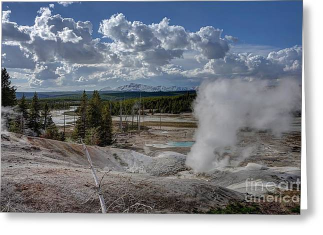 Greeting Card featuring the photograph Yellowstone's Norris Geyser Basin by Bill Gabbert