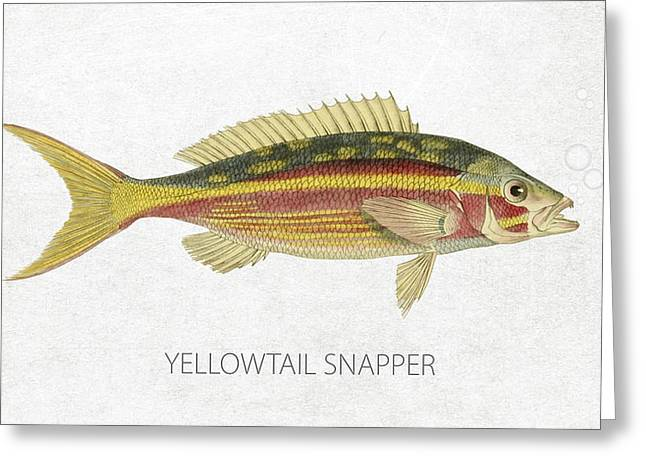 Yellowtail Greeting Cards - Yellowtail Snapper Greeting Card by Aged Pixel