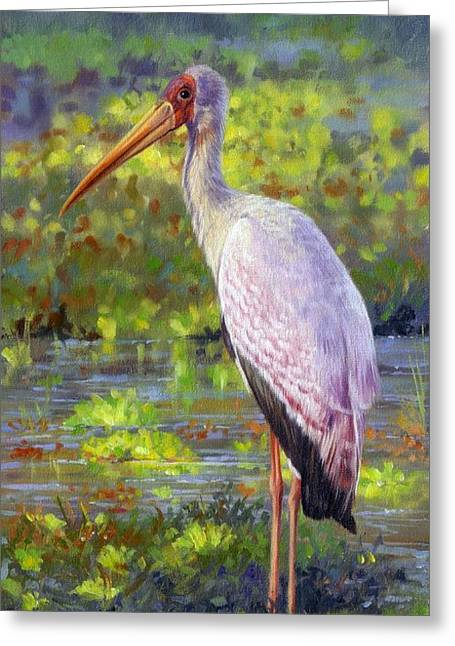 Yelow-billed Stork Greeting Card by David Stribbling