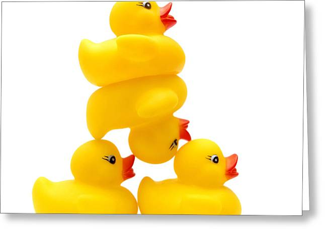 Ducklings Greeting Cards - Yelow ducks Greeting Card by Bernard Jaubert