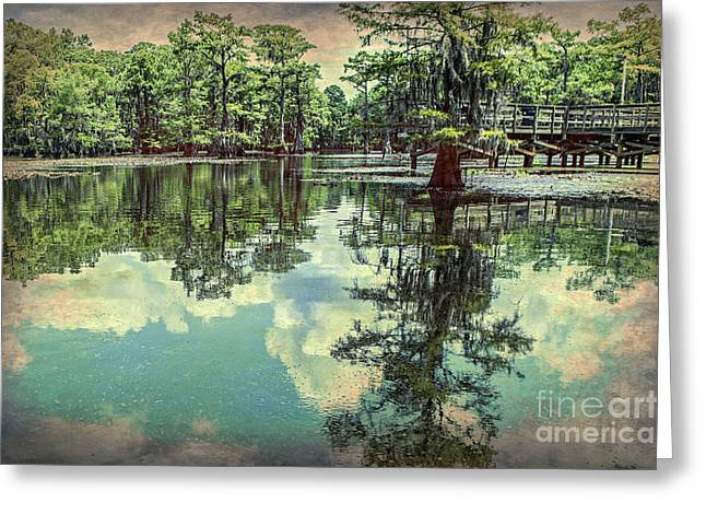 Yesteryear At Caddo Lake Greeting Card by Tamyra Ayles